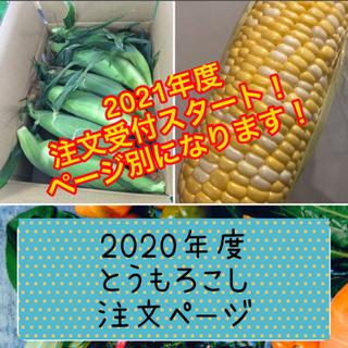 とうもろこし 注文ページ 2020年度(野菜)