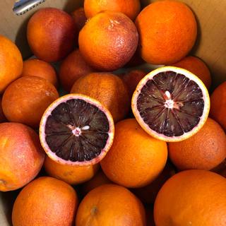 Mvalley様専用ブラッドオレンジ モロ 約4.5kg(フルーツ)