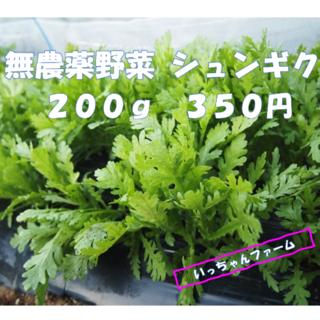 無農薬野菜 シュンギク 200g ご注文いただいてから収穫します 【ネコポス】(野菜)