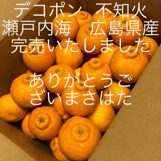 広島県産 デコポン  不知火  完売いたしました(フルーツ)