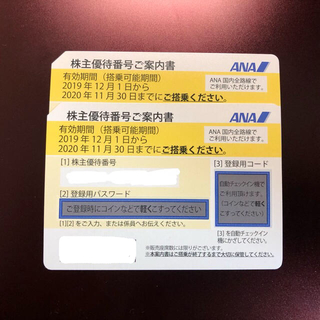 エーエヌエー(ゼンニッポンクウユ)(ANA(全日本空輸))のANA 全日本空輸 株主優待 2枚(航空券)