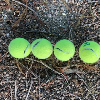 破裂ボール(テニス)