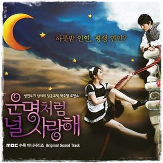 韓国ドラマ 運命のように君を愛するoat(テレビドラマサントラ)