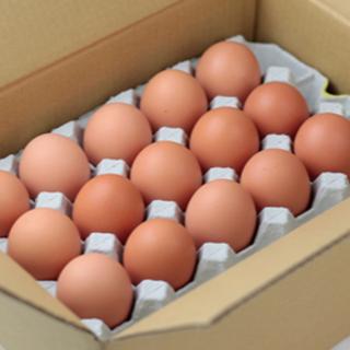 平飼い農家のアウトレット卵30個入(その他)