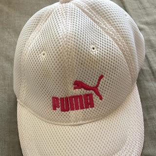 プーマ(PUMA)のプーマ キャップ(キャップ)
