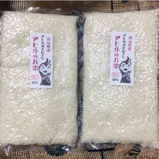 元年度岡山県備前市産「アヒルのお米」お得!3合×2パック:白米(米/穀物)