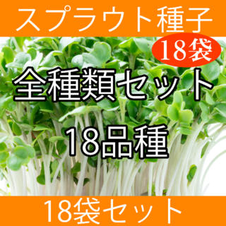 スプラウト種子全種類まとめ買いセット(野菜)