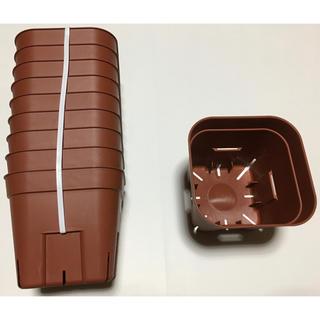 【激安】プレステラ 105 サイズ 10個 茶色 ブラウン 新品  スリット鉢(プランター)