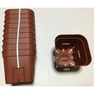 【激安】プレステラ 105 サイズ 10個×2 茶色 ブラウン スリット鉢(プランター)