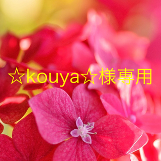☆kouya☆様専用(制汗/デオドラント剤)