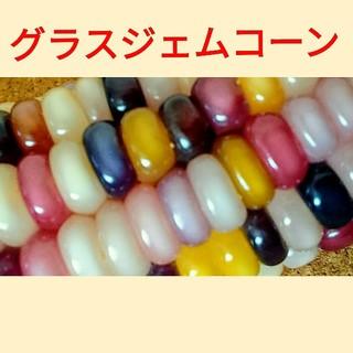 グラスジェムコーンの種❗ 約120粒+α 令和元年産(野菜)