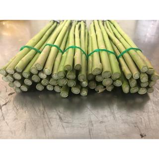 国産グリーンアスパラガス Sサイズ5束(野菜)