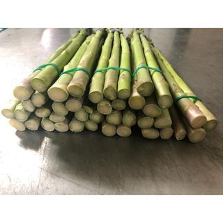 国産グリーンアスパラガス Lサイズ5束(野菜)