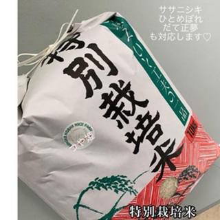 ♡大好評♡ 宮城県産つや姫  キラキラ米🌟(米/穀物)