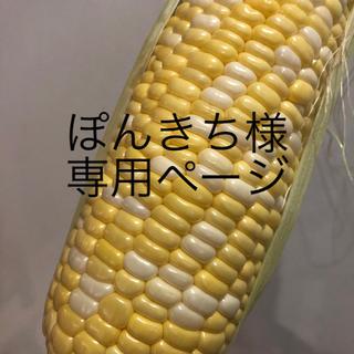 ぽんきち様専用ページ とうもろこし(野菜)