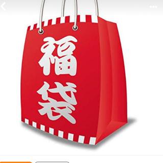 マジェスティックレゴン(MAJESTIC LEGON)の福袋 明日朝一速達発送!(その他)