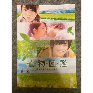 サンダイメジェイソウルブラザーズ(三代目 J Soul Brothers)の植物図鑑 映画 パンフレット(日本映画)