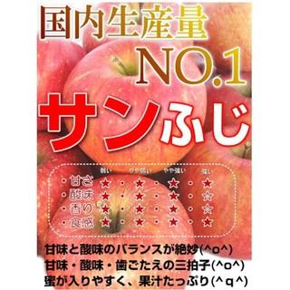 りんご サンふじ(訳あり)10キロ(フルーツ)