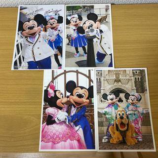 Disney - ディズニー 実写 ポストカード 12枚