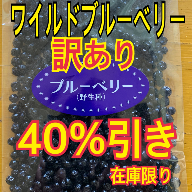ワイルドブルーベリー【送料無料】 食品/飲料/酒の食品(フルーツ)の商品写真