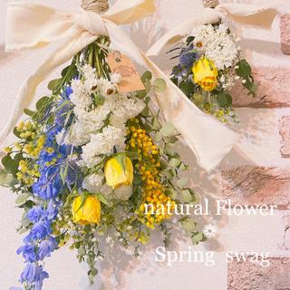 ドライフラワースワッグ❁爽やかディルフィニウムとローズの Spring swag(ドライフラワー)