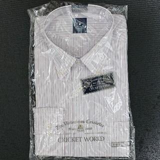 ワイシャツ 白×ピンク×紫 (L)(シャツ)