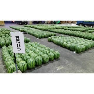 熊本県産 すいか 祭ばやし 2L~3L (フルーツ)