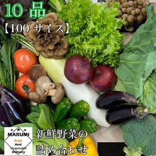 10品 野菜詰め合わせ 野菜セット 八百屋さんおまかせ➕フルーツ(野菜)