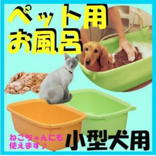 アイリスオーヤマ(アイリスオーヤマ)のペット用バスタブ お風呂 浴槽 犬用 猫用 ペット用品 小型犬用 コンパクト(その他)