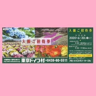 東京ドイツ村 入園ご招待券 入園無料券 有効期限2020.6.30(遊園地/テーマパーク)