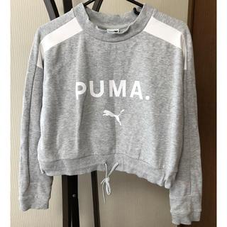プーマ(PUMA)のPUMA トップス(カットソー(長袖/七分))