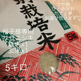 裕子様専用【ササニシキ5キロ×1(精米)】 【ササニシキ5キロ×1(玄米)】 (米/穀物)