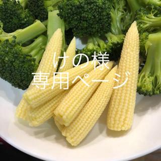 けの様専用ページ ヤングコーン (野菜)