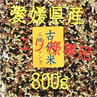 ユリ様専用 古代米3種ブレンド 愛媛県産 800g(米/穀物)