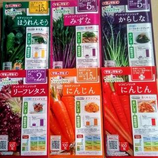 初心者様向き 初めての家庭菜園  春まきの野菜の種6種類セット(野菜)
