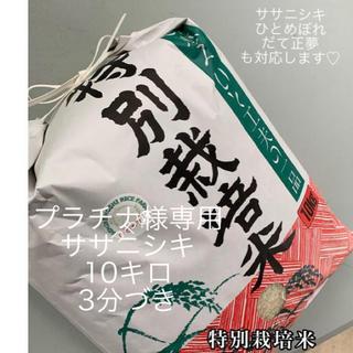【プラチナ様専用】ササニシキ10キロ3分づき(米/穀物)