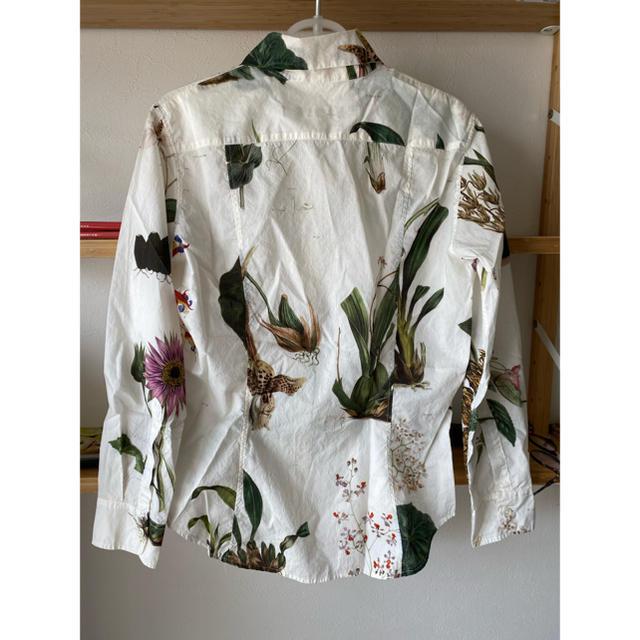 Paul Harnden(ポールハーデン)のポールハーデン paul harnden 植物柄 ブラウス レディースのトップス(シャツ/ブラウス(長袖/七分))の商品写真