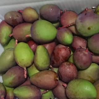 1番 3kg グリーン マンゴー 摘果(フルーツ)