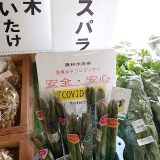 ウダーラさんの明日香村産アスパラガス(1kgセット)(野菜)