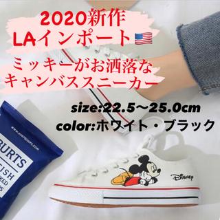 ディズニー(Disney)の【人気】スニーカー ミッキー キャンバススニーカー ホワイト ディズニー 白(スニーカー)