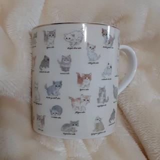 フランシュリッペ(franche lippee)のフランシュリッペ☆マグカップ(グラス/カップ)