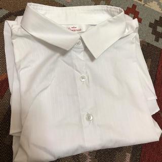アオヤマ(青山)の洋服の青山 レディースシャツ2枚セット(シャツ/ブラウス(長袖/七分))