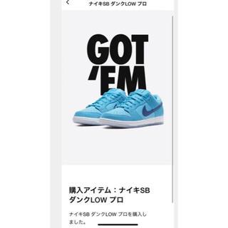 ナイキ(NIKE)のナイキ SB ダンク ロー プロ ブルーフューリー BLUE FURY(スニーカー)