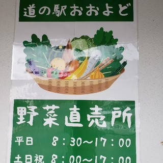 道の駅おおよど×タートルフィートファーム おまかせ季節の野菜セット(野菜)