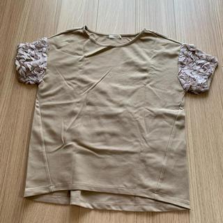 テチチ(Techichi)のTシャツ(Tシャツ/カットソー(半袖/袖なし))