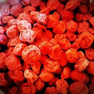 再販 無農薬 無添加 梅干し 小粒 900グラム(漬物)