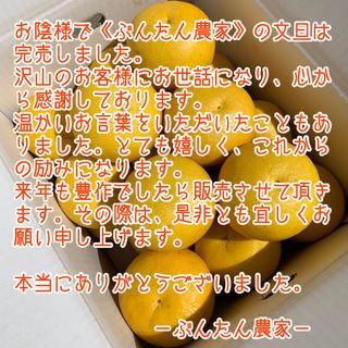 皆様 へ 【ぶんたん農家より】土佐文旦(フルーツ)