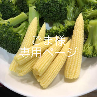 ごま様専用ページ ヤングコーン (野菜)