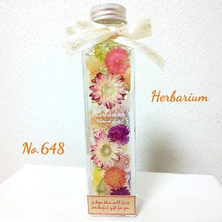 ハーバリウム No.648 パステルガーデン (その他)
