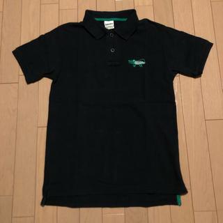 ランドリー(LAUNDRY)のLaundry ワニロゴ刺繍 ポロシャツ Mサイズ(ポロシャツ)